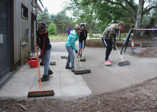Volunteering at Rushmere Park